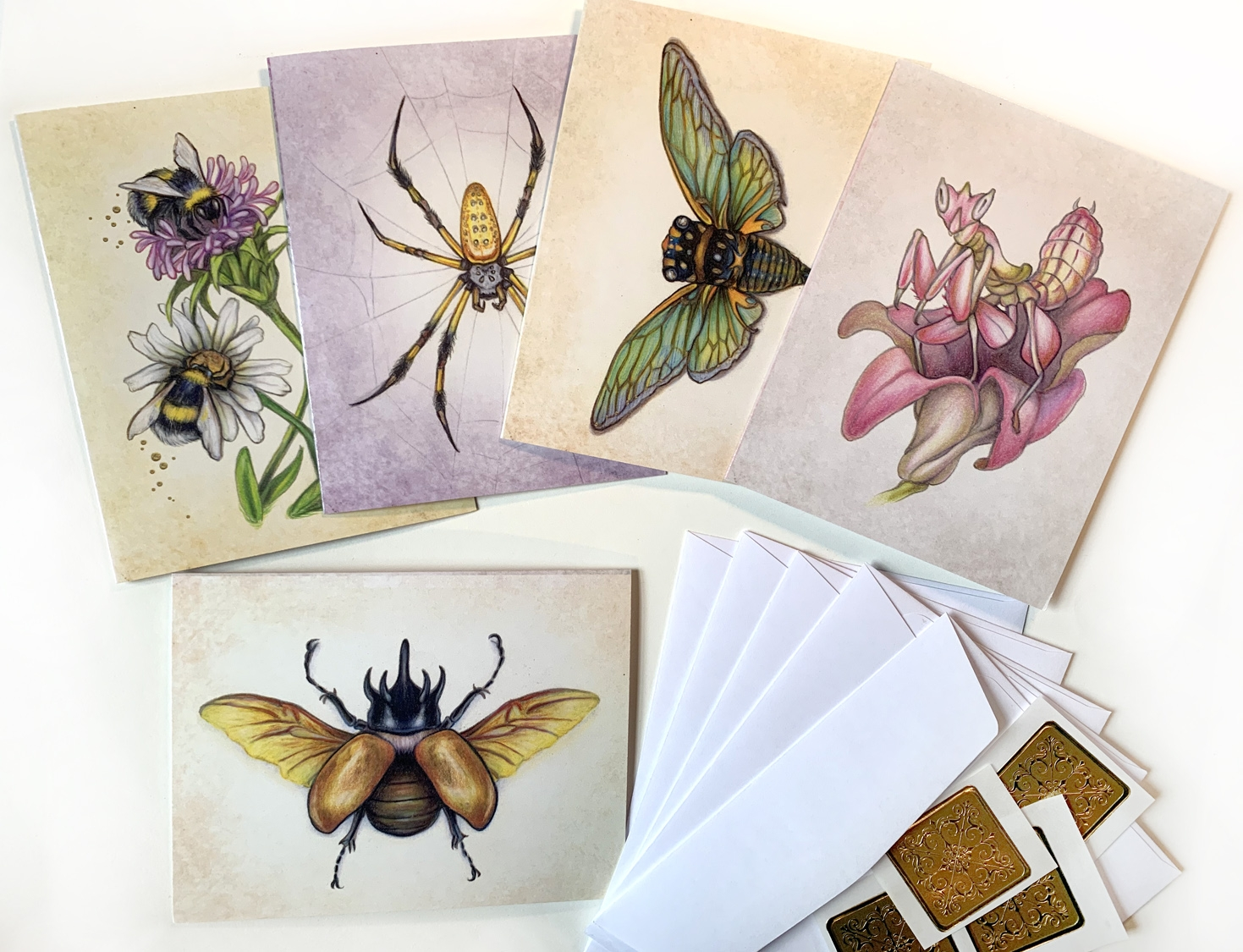 Notecards, Unique Insects with gold accents 4.5 x 5.5 Comic Art